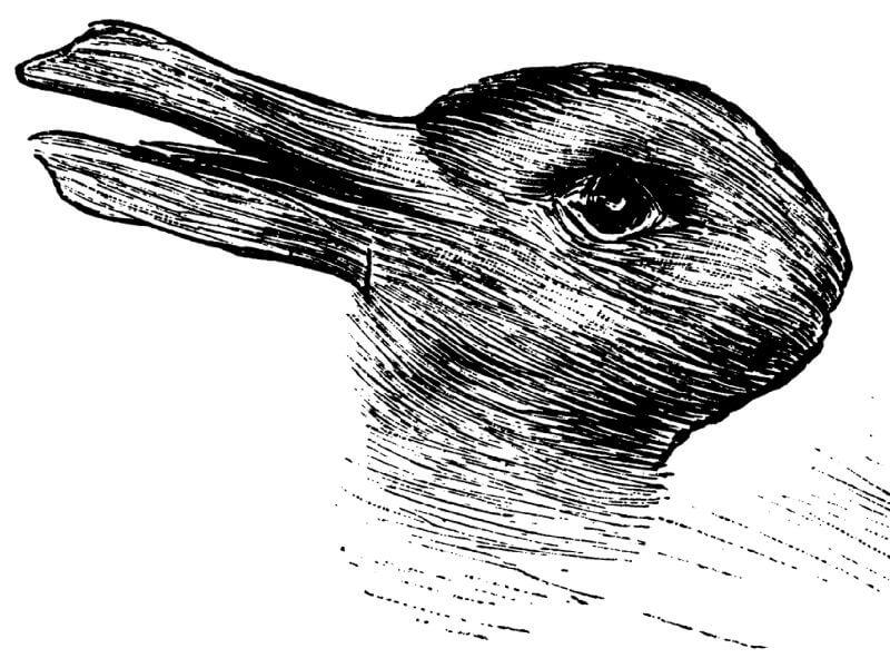 Sve vreme pogrešno tumačimo ovu sliku! Uopšte nije važno da li vidite patku ili zeca!