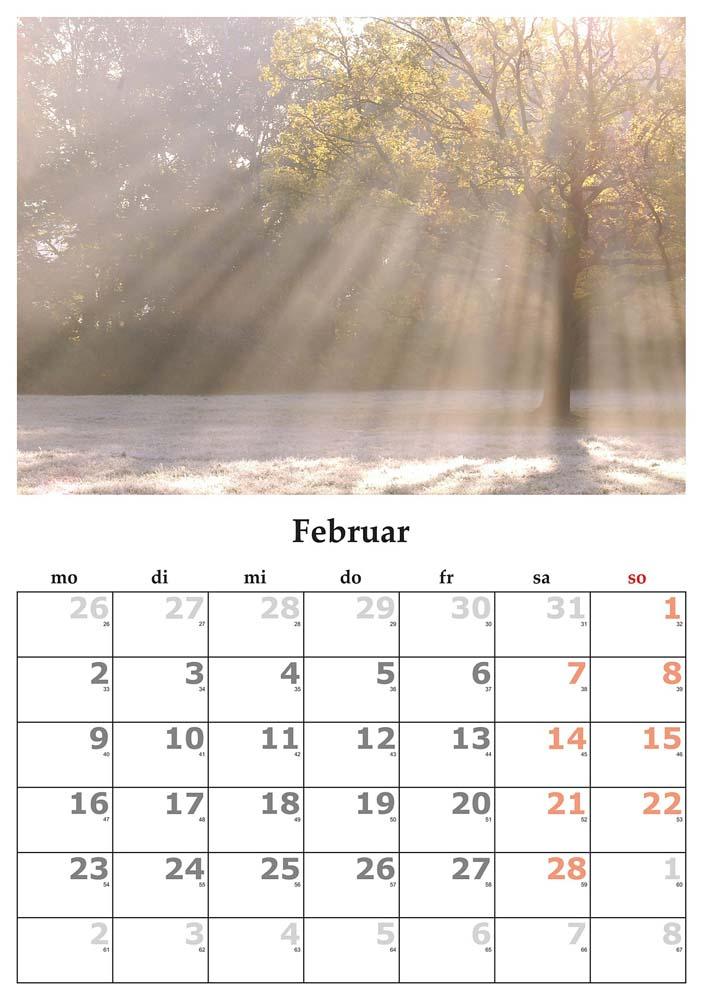 Zašto je februar jedini mesec koji ima samo 28 dana