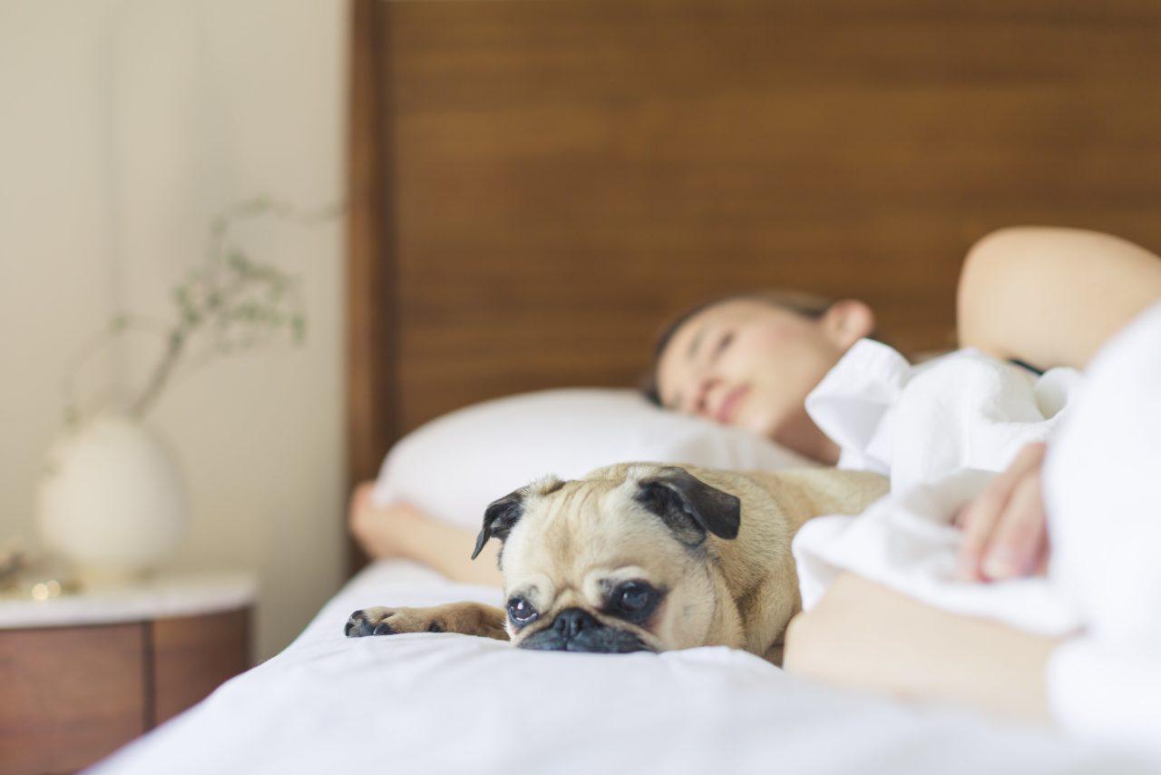 Najveće zablude o spavanju u koje svi i dalje verujemo