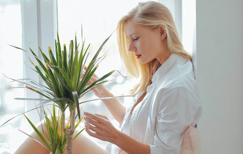 Biljke pomoću kojih se možete rešiti alergija