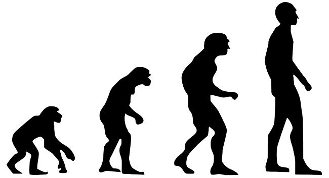 Evo kako izgleda 3,8 miliona godina evolucije kada se smesti u video od 3 minuta