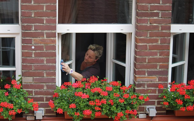 3 važne cake za besprekorno čiste prozore!