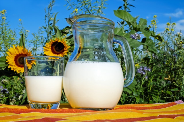 Da li znate koje mleko je najzdravije?