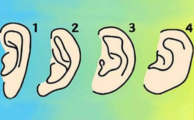 Šta oblik vaših ušiju govori o vašoj ličnosti?