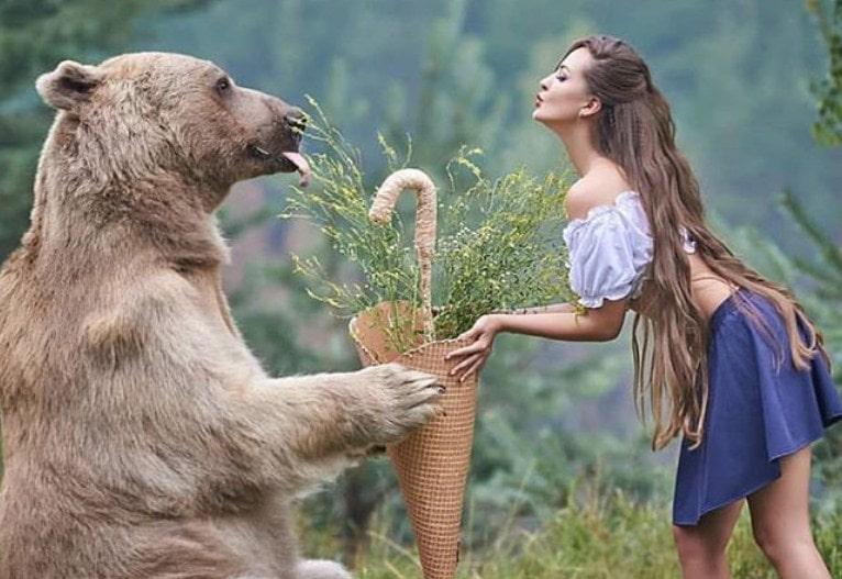 Kako je medved iz Rusije postao internet senzacija