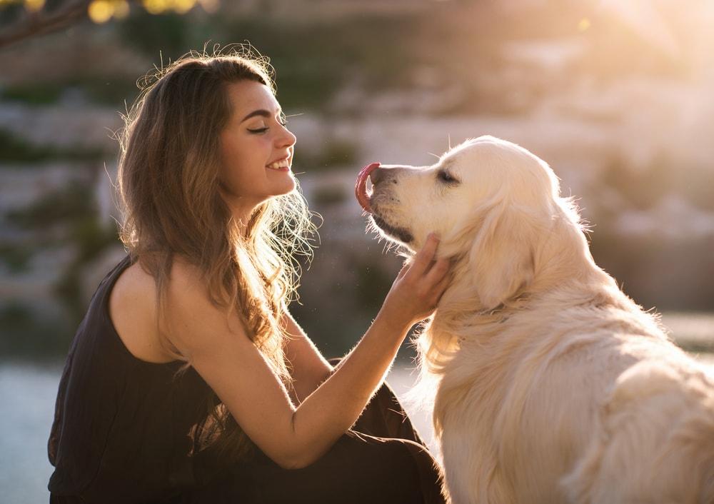 Da li zaista više volimo pse nego ljude