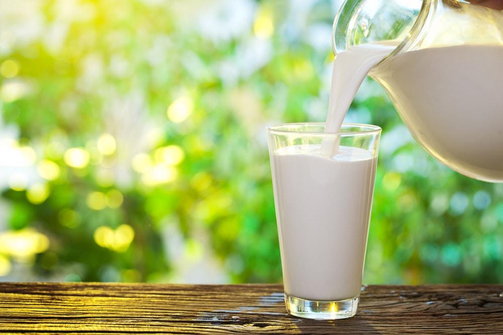 Koja vrsta mleka je najzdravija?
