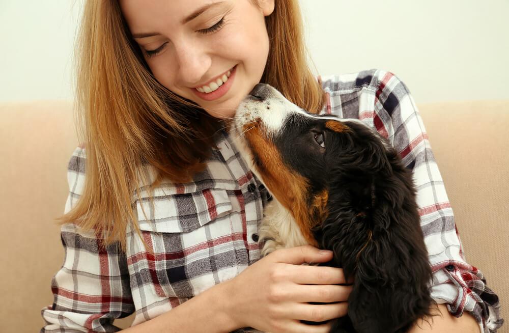 Nesvakidašnje priče o psima koje nas ostavljaju bez daha