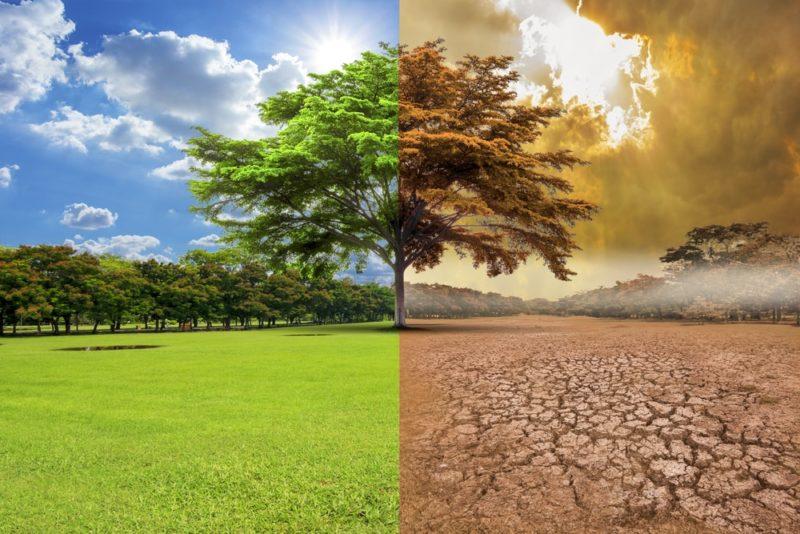 Zašto pojedini ljudi još uvek ne veruju u globalno zagrevanje