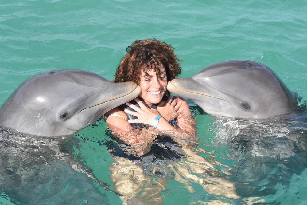 20 zanimljivih činjenica o delfinima