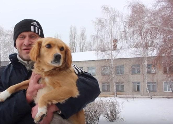 Ruski Hačiko danima čekao vlasnika ispred bolnice