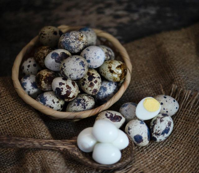 Prepeličje jaje – čudo u maloj ljusci
