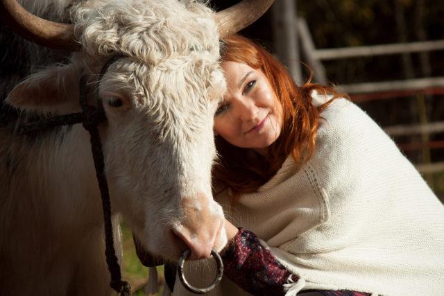 Maženje krava pomaže ljudima da se osećaju smirenije