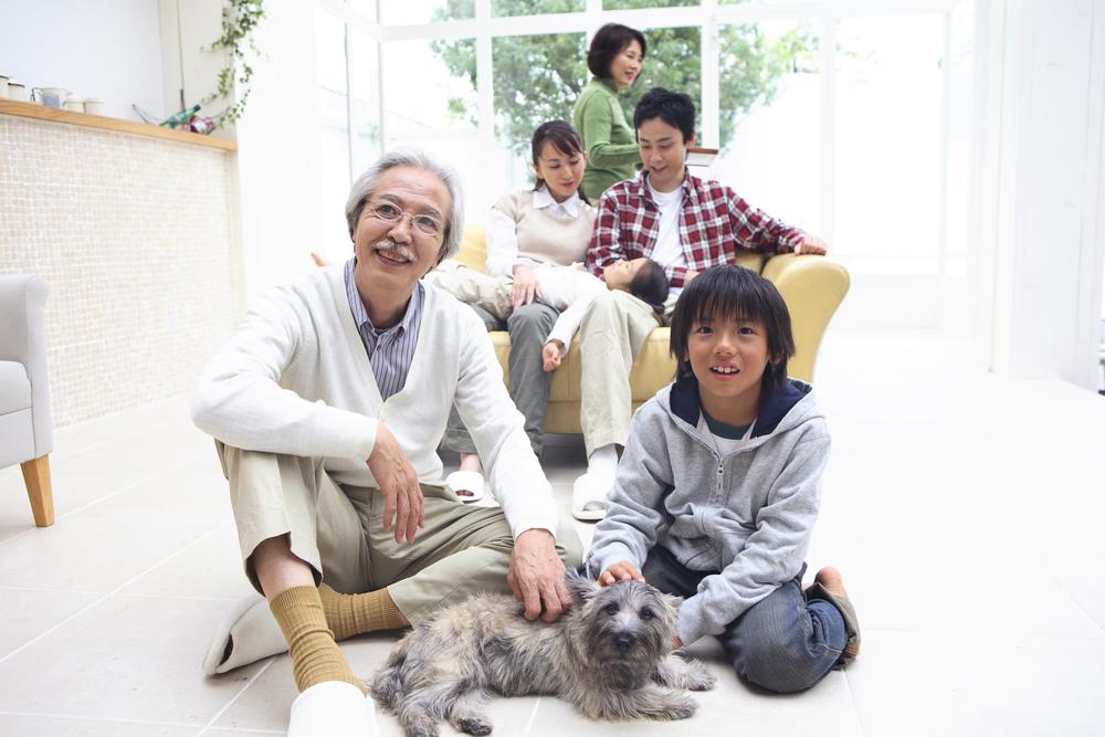 Kućni ljubimci utiču na naše zdravlje