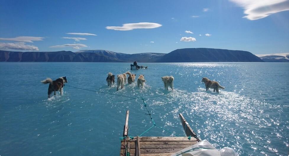 Ova fotografija najbolje pokazuje realnost globalnog zagrevanja