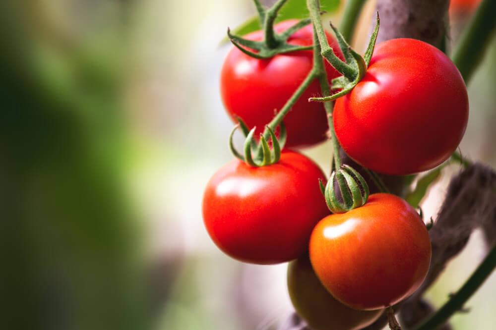 12 namirnica sa najviše pesticida