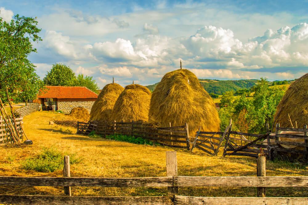 Srbija poklanja seosku zemlju mladima