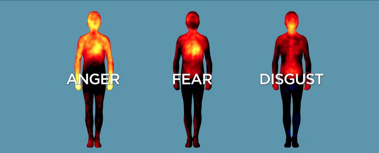 Naučnici pokazali na kojim delovima tela se manifestuju osećanja
