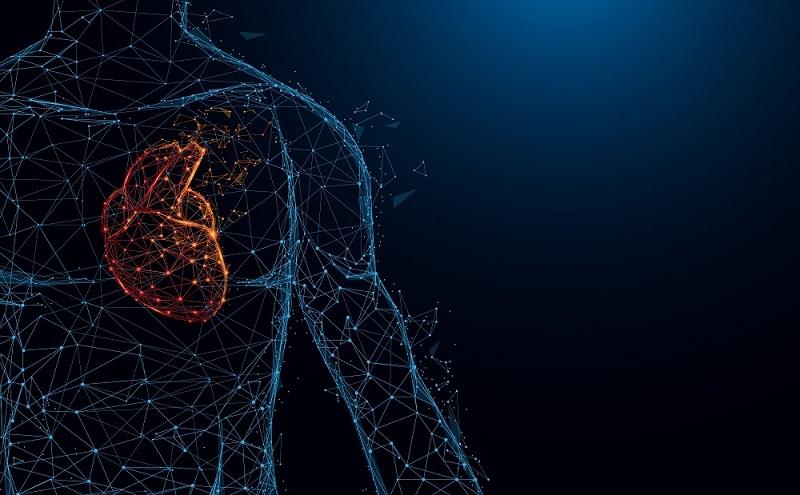 7 najvećih misterija o ljudskom telu