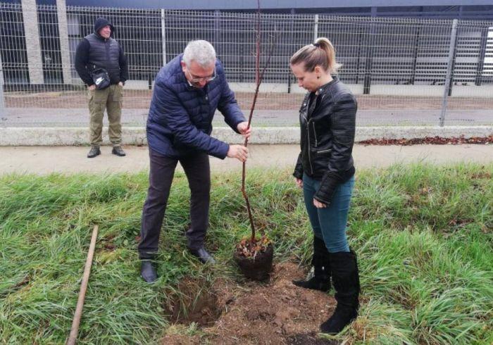 Titel počeo sadnju 16.000 stabala – po jedno za svakog stanovnika