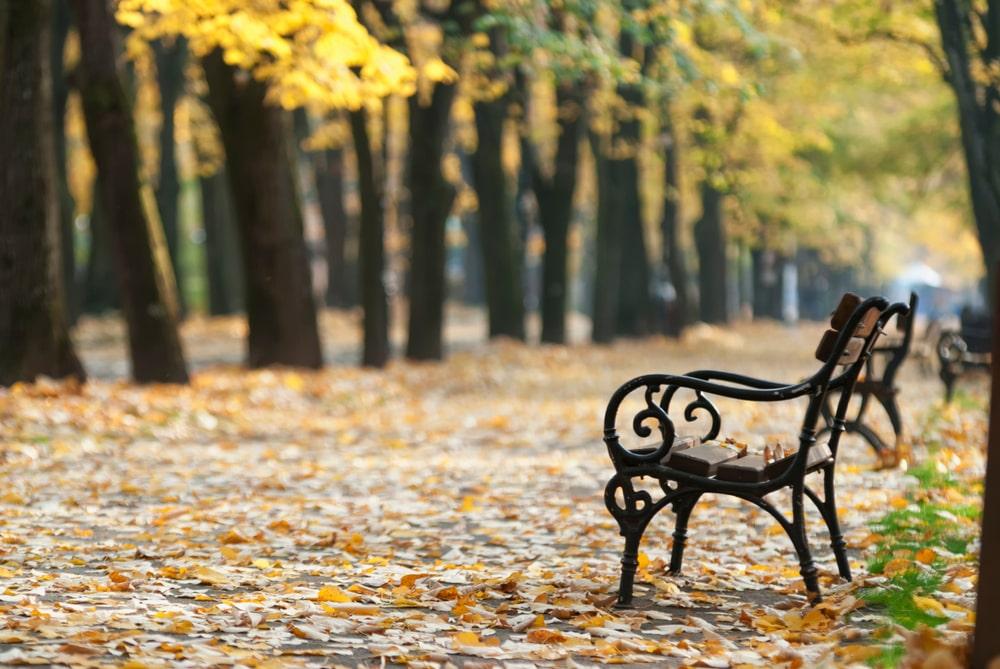 Vremenska prognoza: U Srbiji danas sunčano i osetno toplije