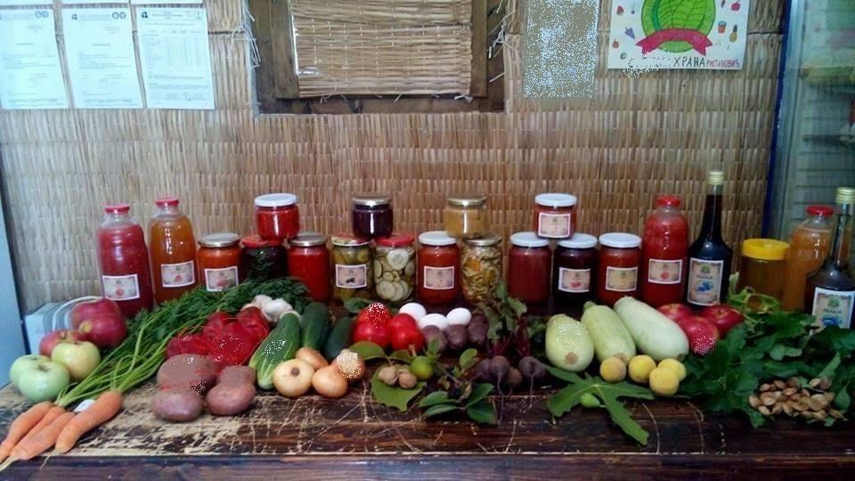 Zoran Ristanović otkriva za DDL: Sve drugo je prevara – evo šta je prava organska hrana! 🍊
