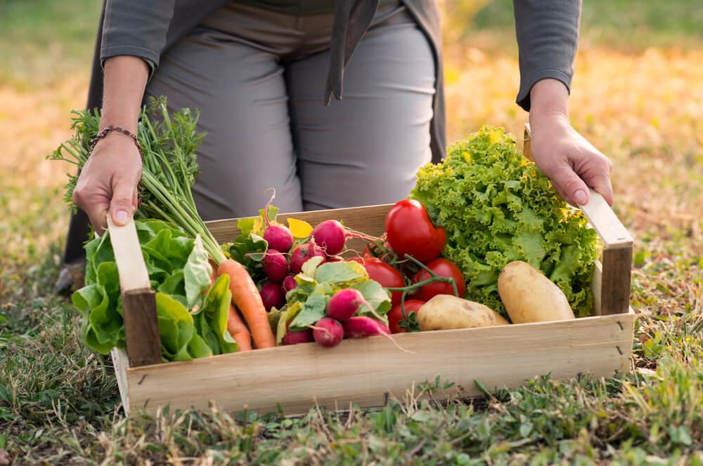Koliko vremena voće i povrće putuje do prodavnice?