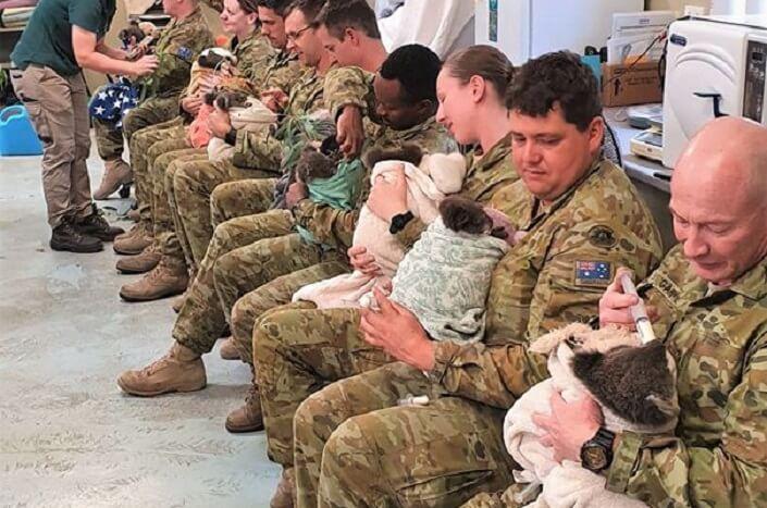 Australijski vojnici pomažu koalama tokom odmora