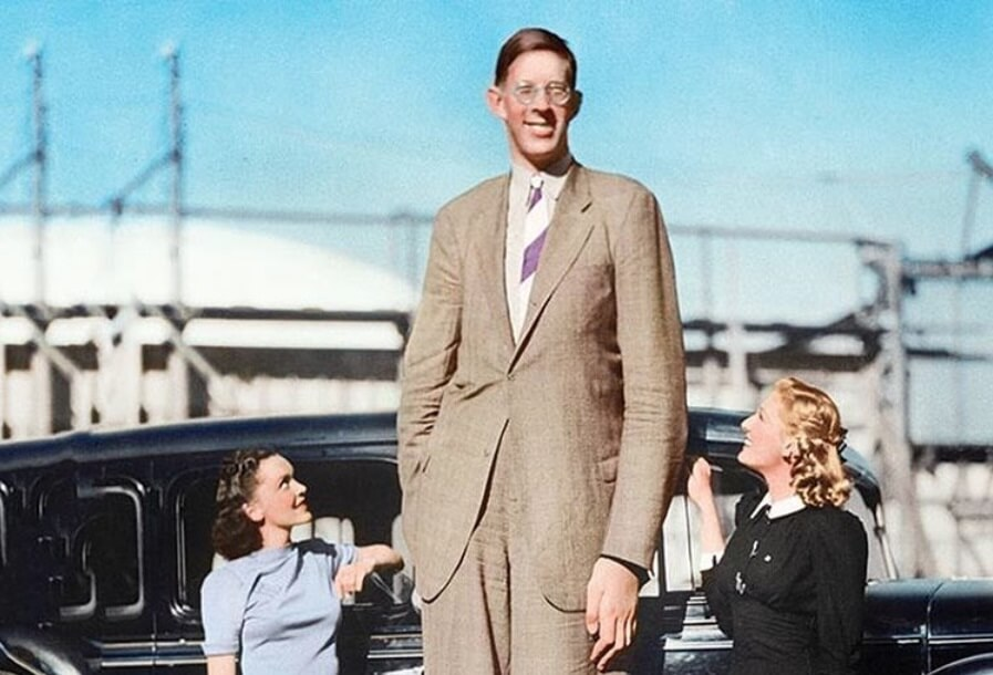 Ovo su zvanično najviši ljudi u istoriji
