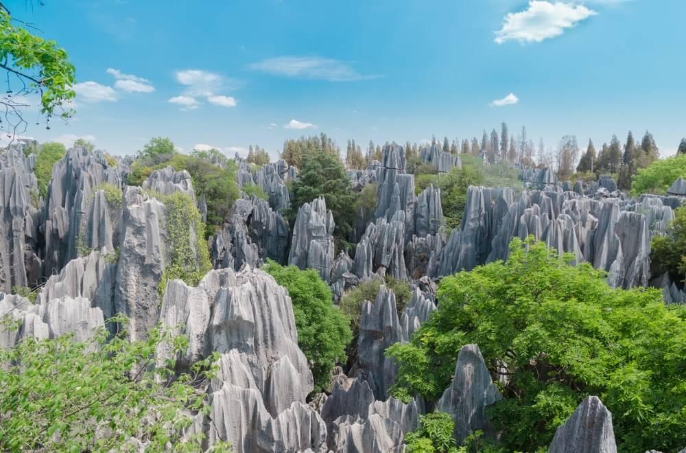 Šilin – misteriozna stenovita šuma u srcu Kine