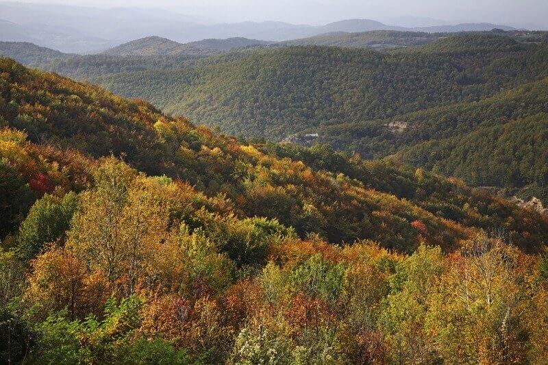Ova srpska planina je pravo čudo prirode i spoj nespojivog!