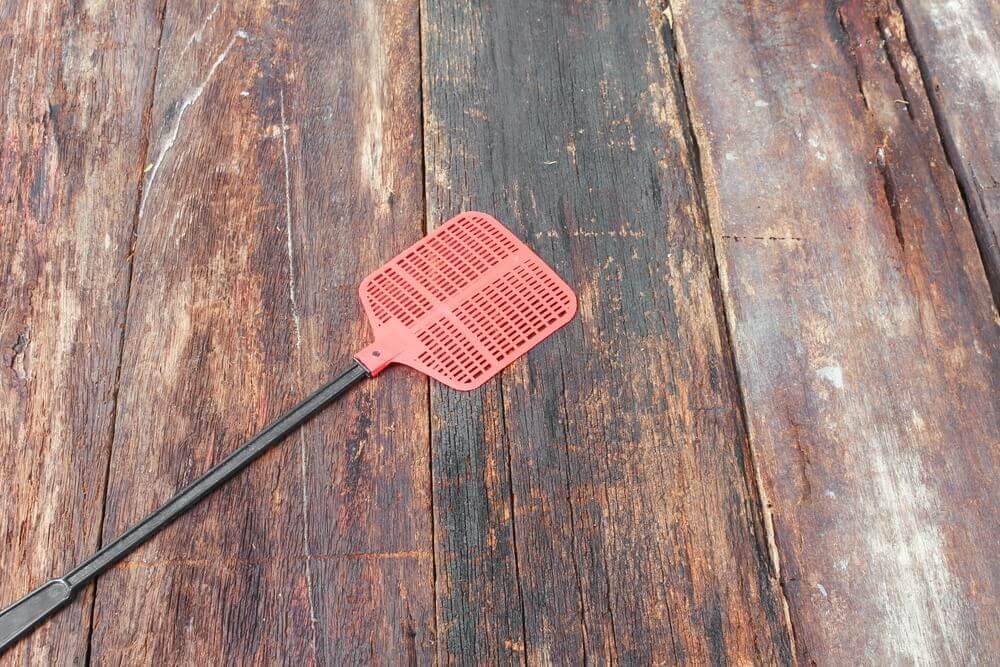 Koji je zvaničan srpski naziv za predmet kojim ubijamo muve?