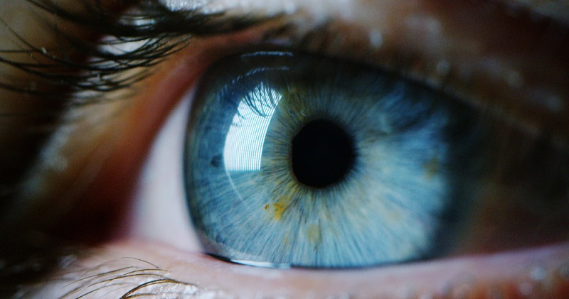 Pet pitanja o mrežnjači oka