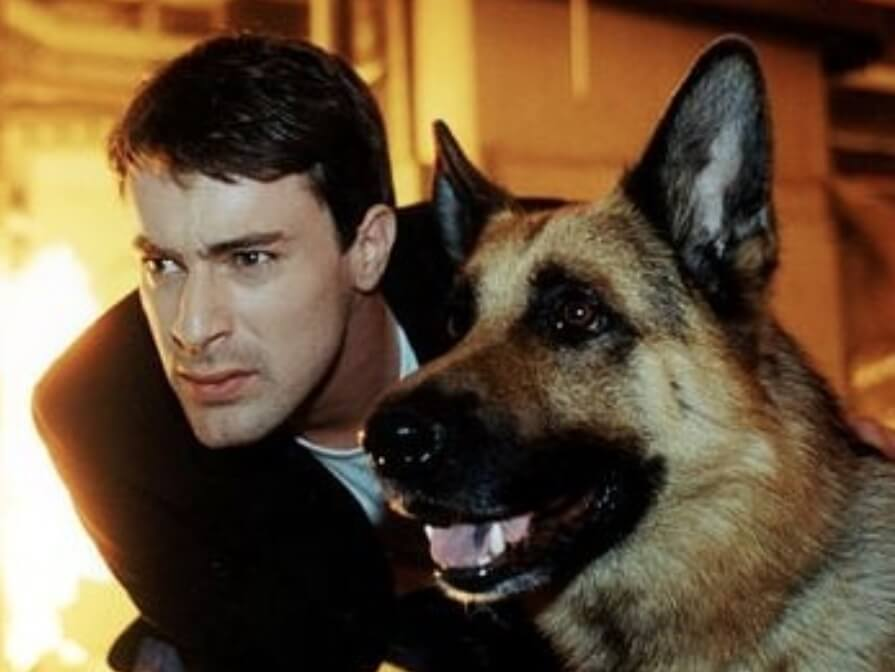 """Policijski pas koji je imao kultni status – evo kako danas izgledaju glumci iz serije """"Inspektor Reks"""""""