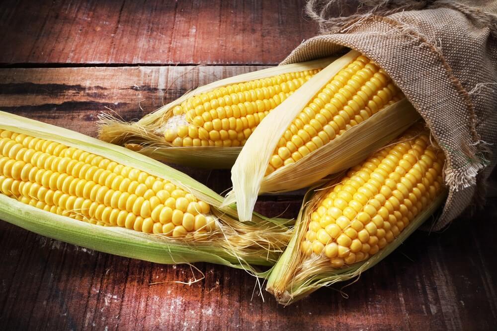 Celi život pogrešno jedete kukuruz – pogledajte kako to rade Japanci
