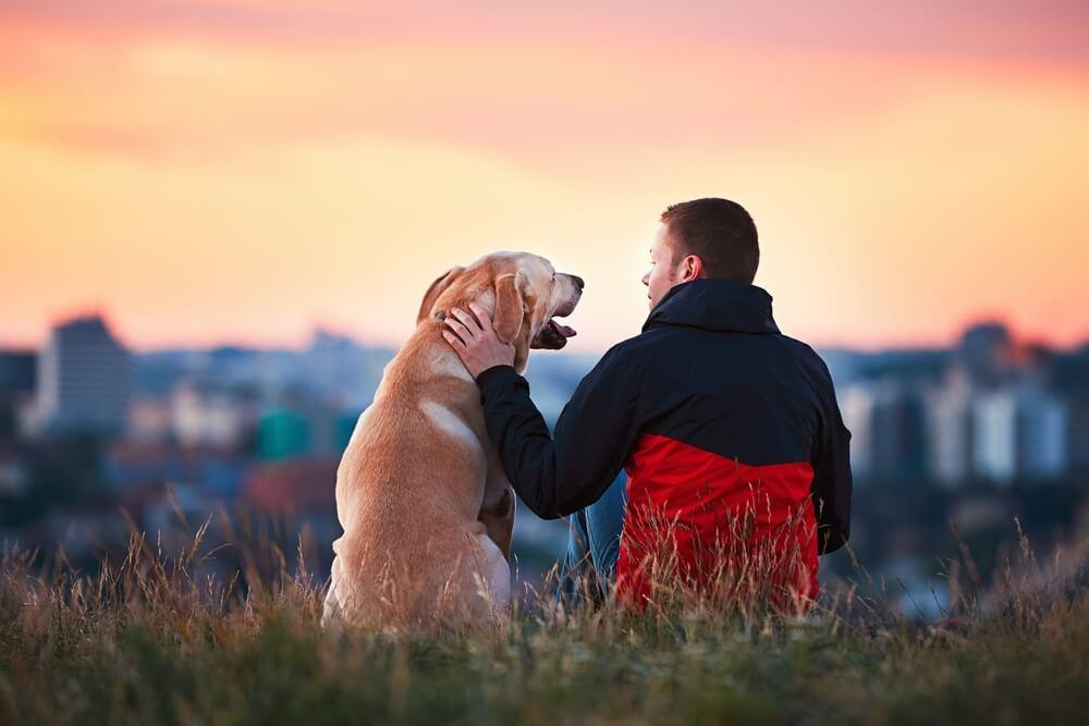 """Evo šta se dešava sa vašim psom kad mu kažete """"volim te"""""""