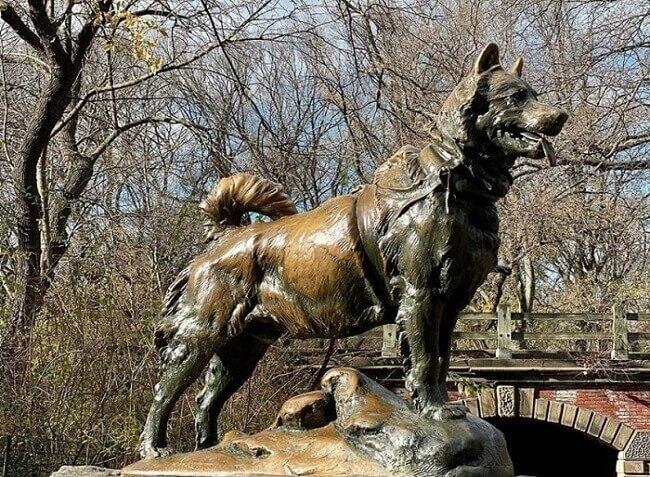 Velika trka milosti – hrabri pas Balto koji je spasio grad