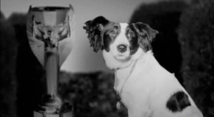 Kako je pas Pikls spasio svetsko prvenstvo u fudbalu