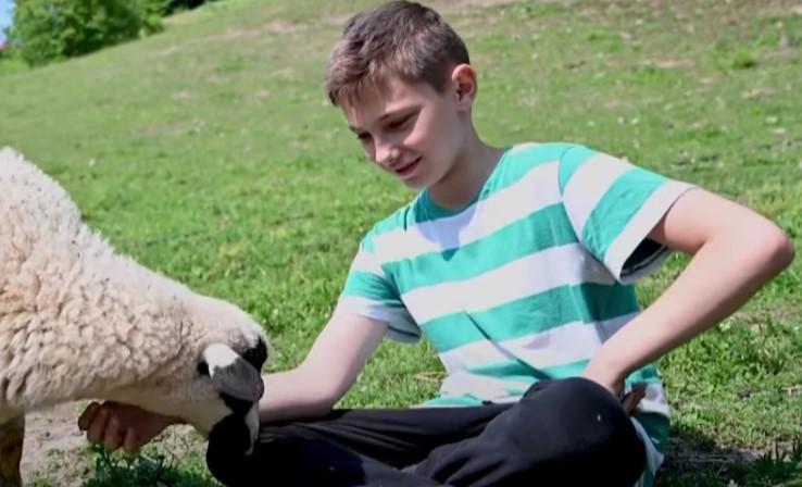 Ovaj mladi pastir od džeparca ne kupuje igračke već ovce