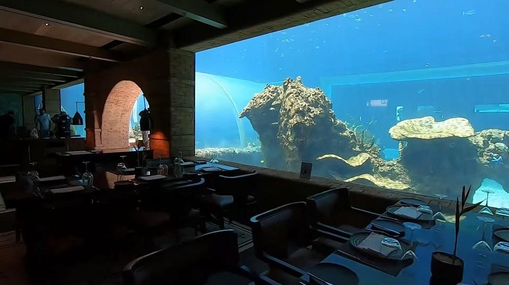 Najbolji restoran na svetu nalazi se u akvarijumu