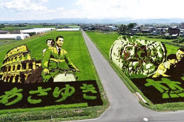 Tambo āto – Umetnička dela na poljima pirinča u Japanu